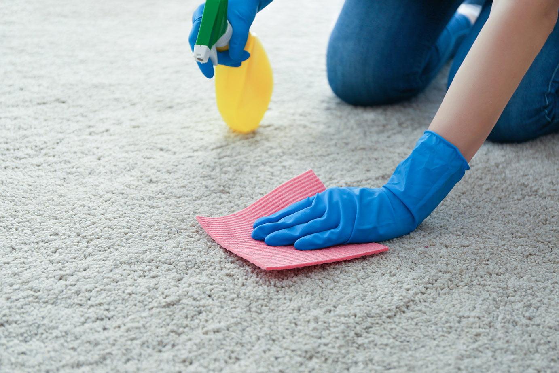 Blot carpet clean